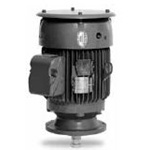 Baldor Vertical Solid Shaft Motor Image