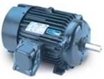 Esr motor systems llc electric motors drives for Leeson explosion proof motor