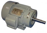 Sterling Close-Coupled Pump Motor Image
