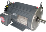 US Motors Inverter/Vector Motor Image